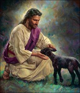 gentle-shepherd-large-image-zoom